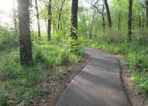 walking trail surfaces asphalt sand